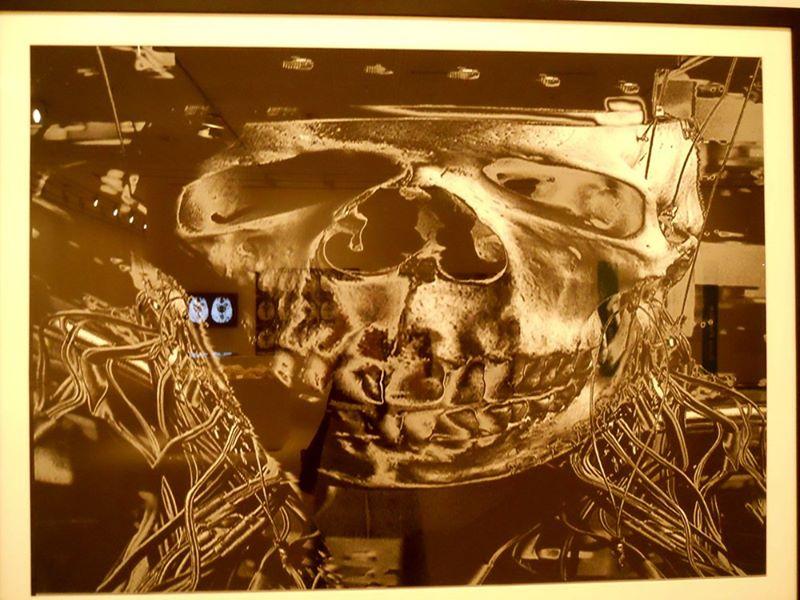 Temelde İnsan, Çağdaş Sanat ve Nörobilim sergisi