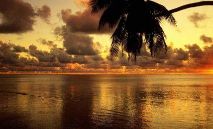 Kelimelerin ruhu: Güneş
