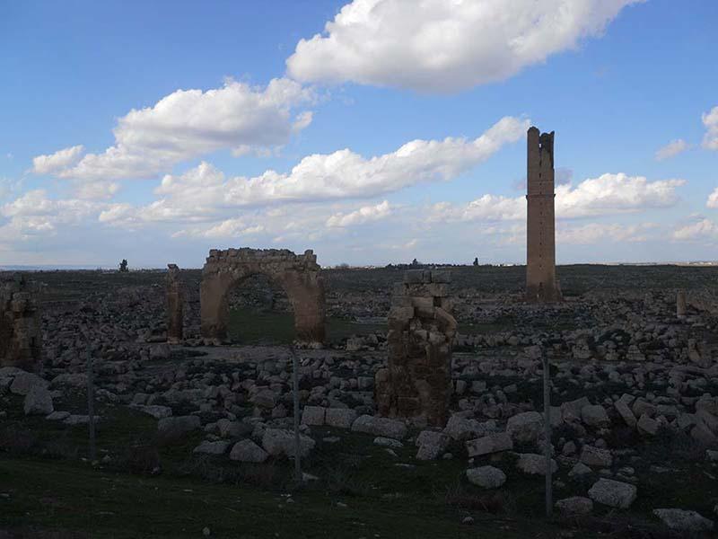 Harran Üniversite Harabeleri, Urfa