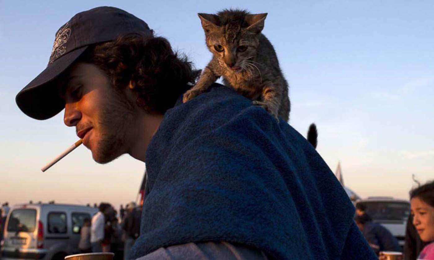 Her şeylerini kaybetseler de hayvan dostlarını geride bırakmayan mülteciler