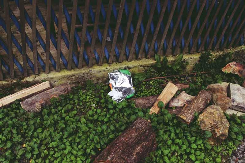 """Boğazına kadar çöpe batmış """"insanlık"""""""