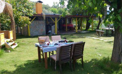 Kamboçya'dan Yanıklar Köyü'ne: Avocado Garden
