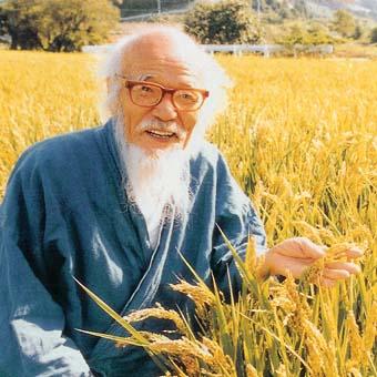 Doğal tarımla yaşamı filizleyen insan: Masanobu Fukuoka