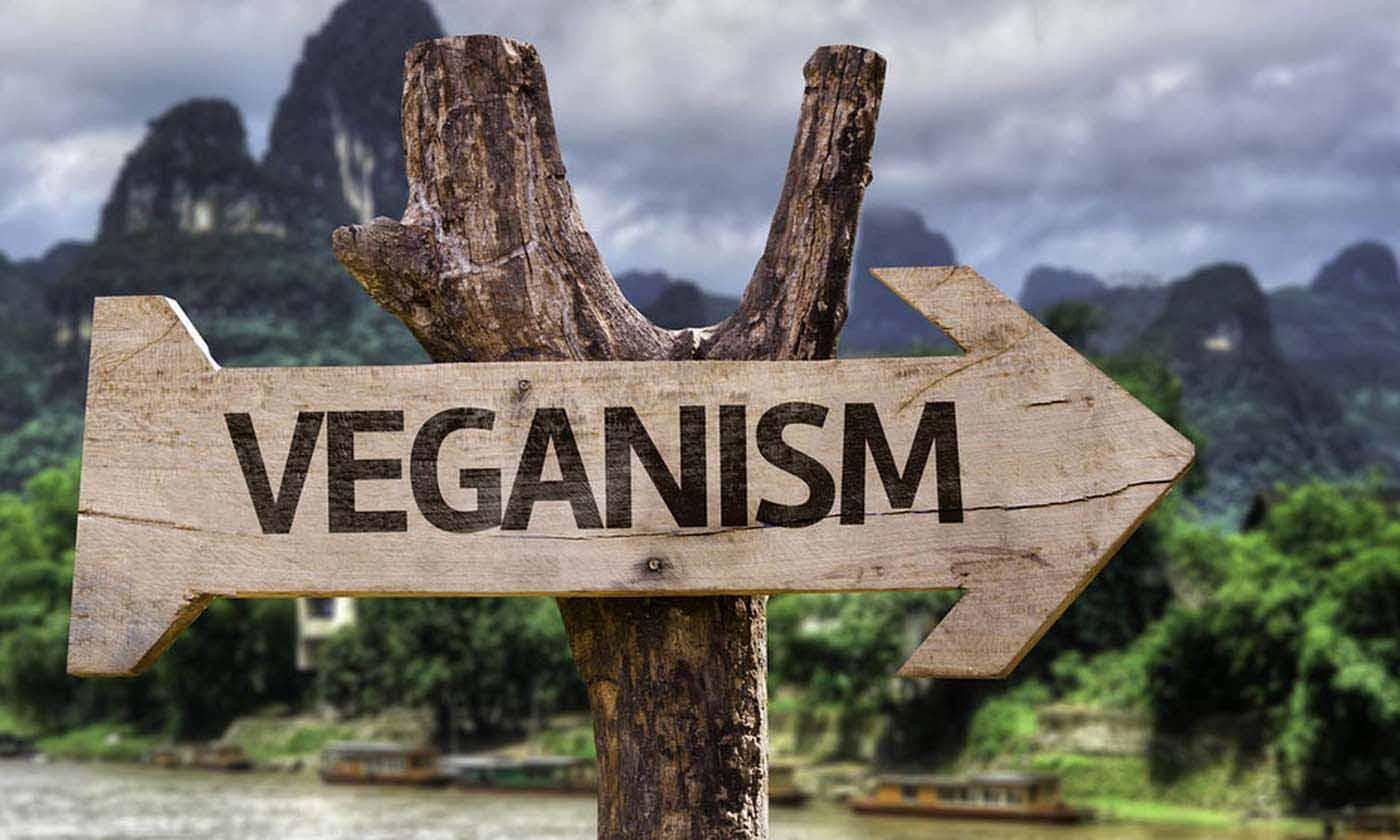 Bugün vegan olmak için 7 önemli neden