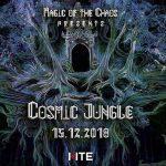 MOC,15 Aralık'ta Cosmic Jungle ile evine dönüyor