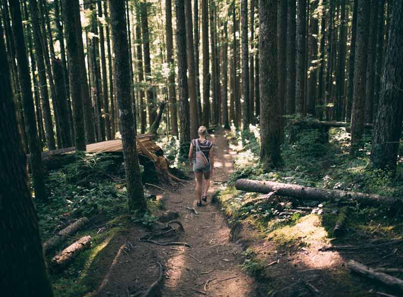 Bir sonraki doğa yürüyüşünüz için 11 hijyen önerisi