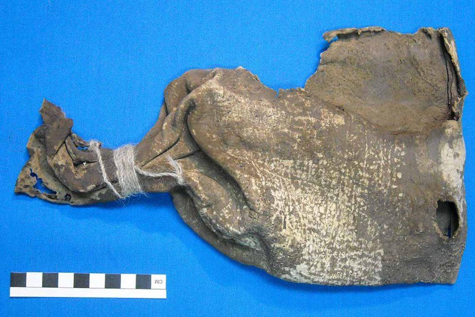 1000 yıllık bir Şaman kesesinden çeşitli halüsinojenler çıktı