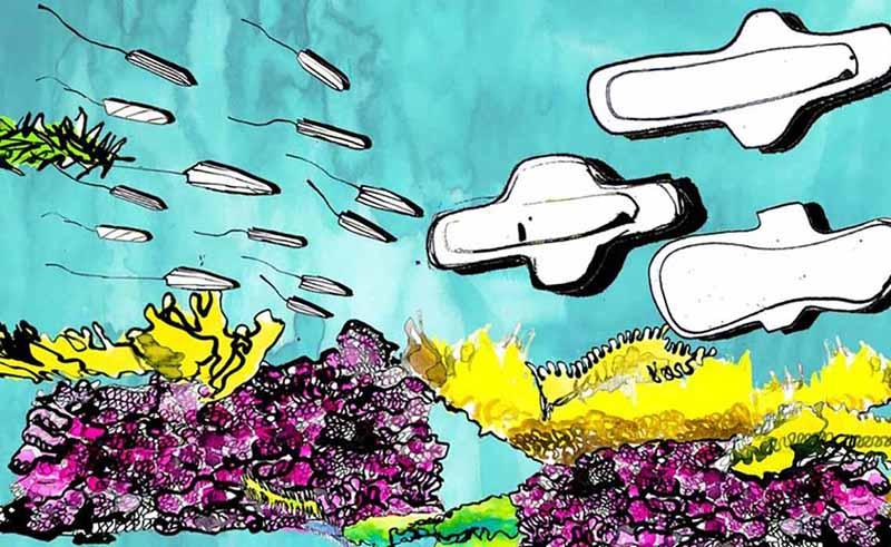 Okyanus kirlenmelerinde en yaygın beşinci atık kadın pedleri ve tamponlar