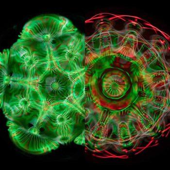 Ses dalgaları ile çarpıştırılan suyun trippy fotoğrafları