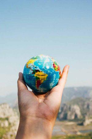 İnsanlar, Dünya'daki yaban hayatının yüzde 83'ünü ve tüm bitkilerin yarısını yok etti