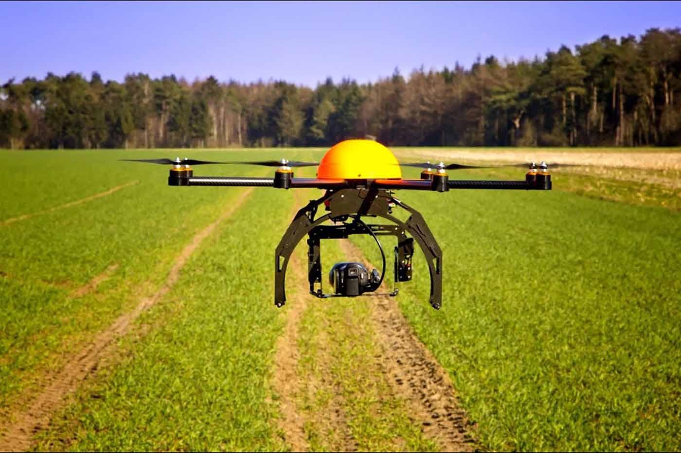 Ağaç diken drone'lar ormanların kurtarılmasına yardım edebilir