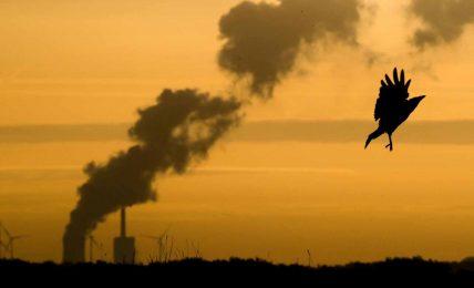 Almanya kömür yakıtlı elektrik santrallerini kapatıyor