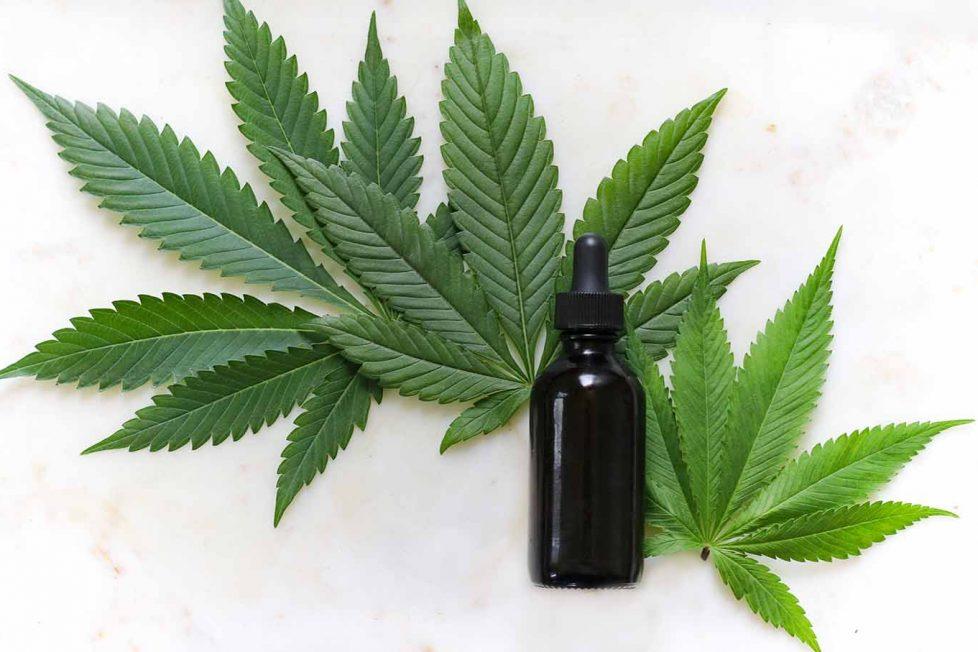 Endokannabinoid sistem nedir ve THC kanserli hücreyi öldürür mü?