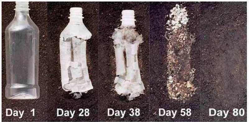Gezegene zararlı 5 şeye kenevir alternatifi