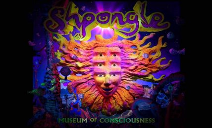 Top 5: Shpongle