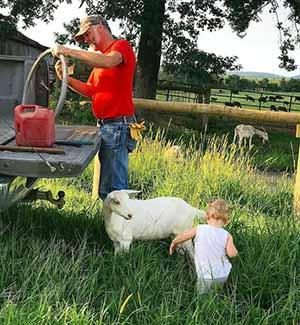 Bu çift, inek ve tavuk çiftliğini mantarhaneye dönüştürdü