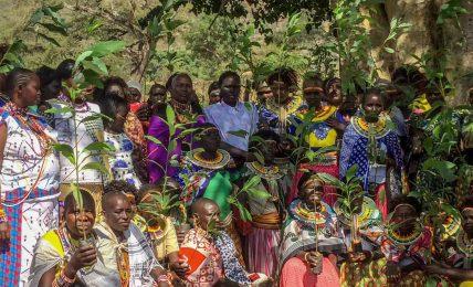 Ekosistemi korumak için yerli halkların yaşam kurallarına bakmak yeterli