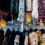 Kaliforniya, kürk giyim satışını yasaklayan ilk eyalet oldu