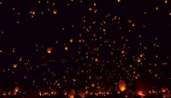 Gökyüzü feneri peçeli baykuşu öldürdü
