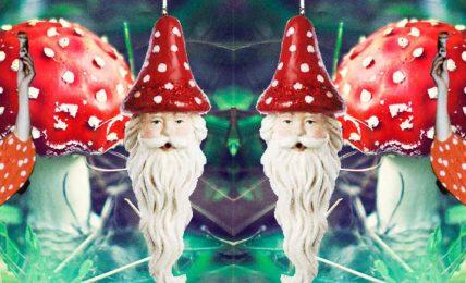 Noel Baba, sihirli mantarlar ve uçan ren geyiği