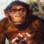 Stoned Ape Theory: Sihirli mantarlar insan evriminin neresinde duruyor?