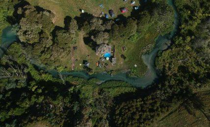 İklim değişikliği ile mücadele etmek için Yeni Zelanda 1 milyar ağaç dikmek istiyor