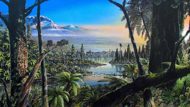 Antarktika kıtasında 90 milyon yıllık yağmur ormanı keşfedildi