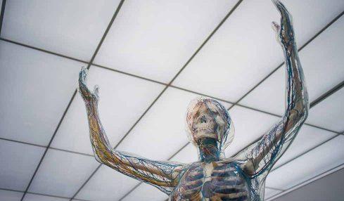Bağışıklık sistemini doğal yollarla güçlendirmenin 9 yolu