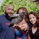 Bebek güvercin ona yardım eden insanı annesi gibi benimsedi
